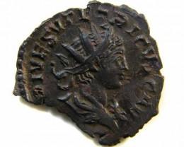Amazing detail Imperial Rome  Tetricus II. AE-Antoninian.  273/74   AC 510