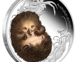BUSH BABIES II - ECHIDNA 2013 1/2OZ SILVER PROOF COIN