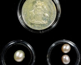 TREASURES OF THE OCEANS, PEARL SERIES 13-100 (TPS)