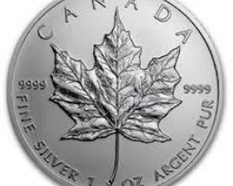 2013 Maple leaf .9999 pure Silver Coin