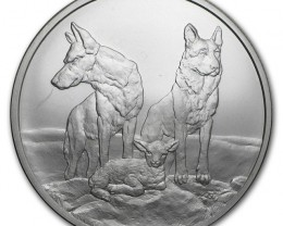 Silver shield Aware and Prepare one ounce .999 silver