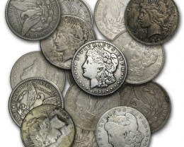 Tube 20 Morgans and Peace Dollars Silver Coins