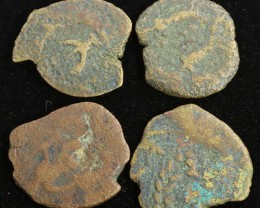 Four Biblical Coin Janenaeus Period  in display box SU761