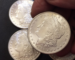 1892 -1895 Replica set four   Morgan Dollars   J2764