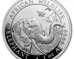 2018 Somalia 1 oz Silver Elephant Pure Silver 99.9% Big Trunk