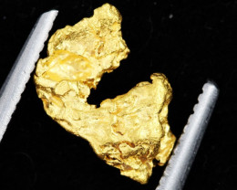 .66 Grams Australian Alluvial Gold Nugget   LGN  1293