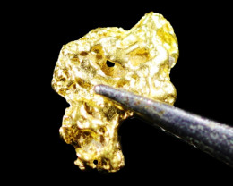 0.39 Grams Large Australian  Gold Nugget   LGN 1558