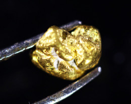 0.88 Grams Large Australian  Gold Nugget   LGN 1567