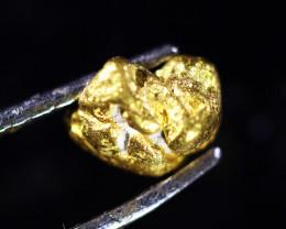 0.88 Grams Large Australian  Gold Nugget   LGN 1567