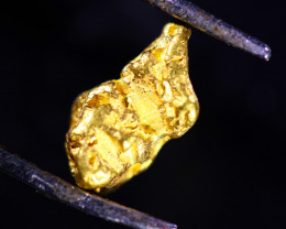 0.78 Grams Large Australian  Gold Nugget   LGN 1568