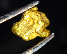 0.76 Grams Large Australian  Gold Nugget   LGN 1575
