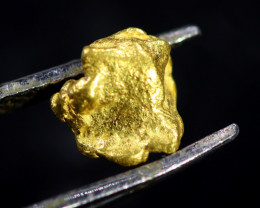 0.66 Grams Large Australian  Gold Nugget   LGN 1584