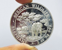 Collector Elephant Somalia pure Silver .999 coin