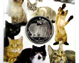 Isle Of Man 2009 Chinchilla Cat coin CO 1106