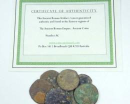 UNCLEANED DESERT PLATINA  MIXED BIBLICAL COINS  AC 708