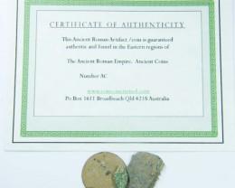 UNCLEANED DESERT PLATINA  MIXED BIBLICAL COINS  AC 710