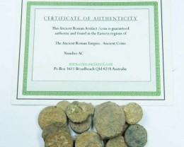ONE UNCLEANED DESERT PLATINA  MIXED BIBLICAL COINS  AC 711