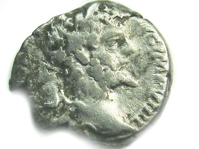 ROMAN SILVER DENARII  SEPTIMUS SEVERUS   AC 481