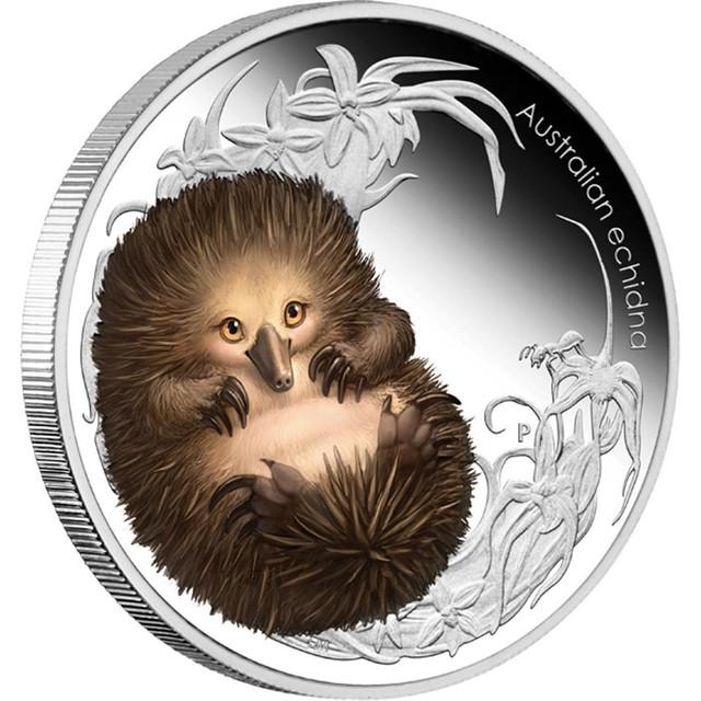 BUSH BABIES II - ECHIDNA 2013 1/2OZ SILVER PROOF COIN