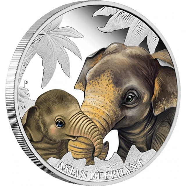 Mother Love 2014 ½ Oz silver  Proof coin