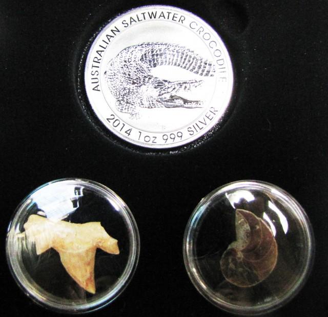 Silver salt water Crocodile Series  CC 137