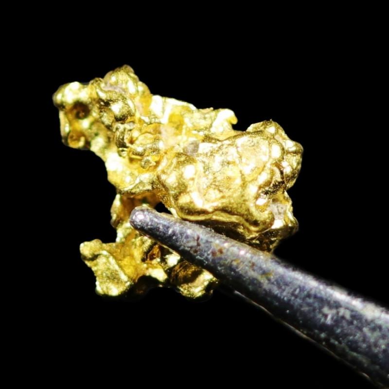 0.36 Grams Large Australian  Gold Nugget   LGN 1559