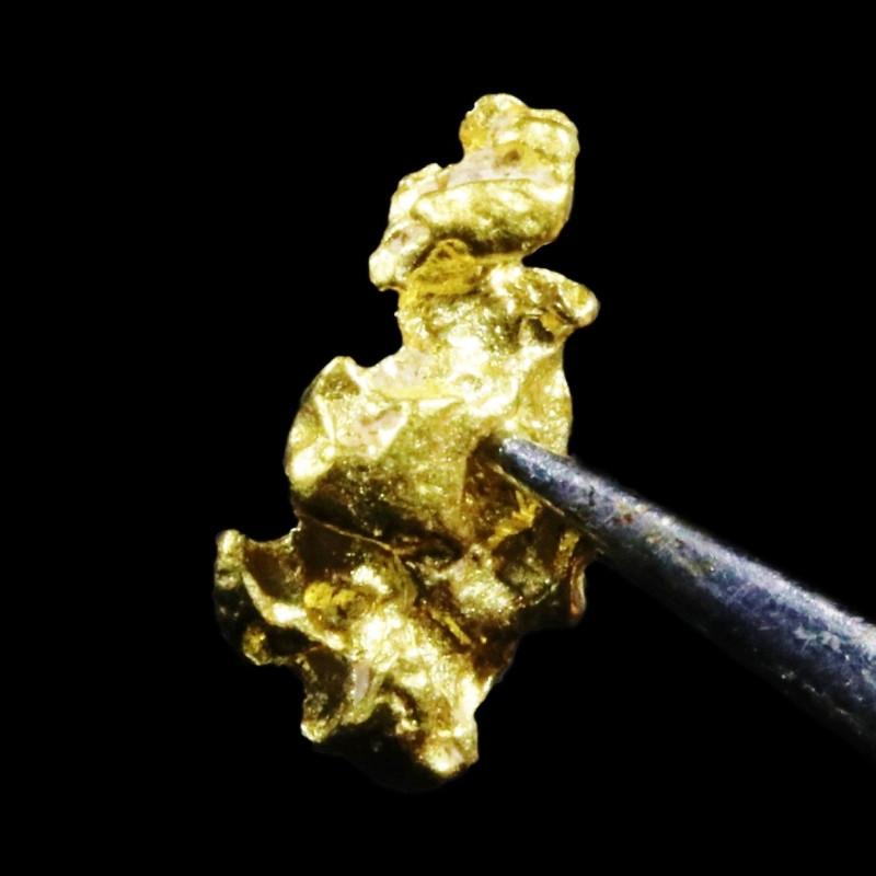 0..5 Grams Large Australian  Gold Nugget   LGN 1561
