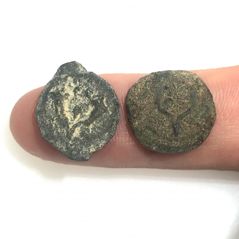 Coins as found not cleaned Judean Bronze Platina CP 130