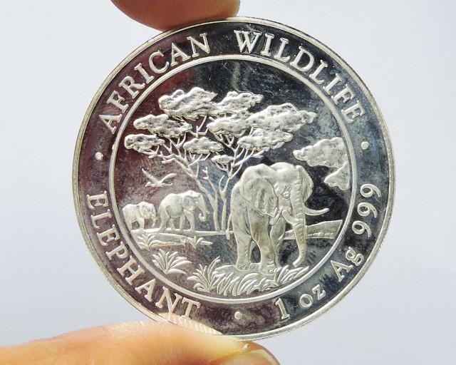 Collector Elephant Somalia pure Silver .999 coin