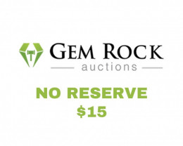 $15 Gemstone Auctions - No Reserve