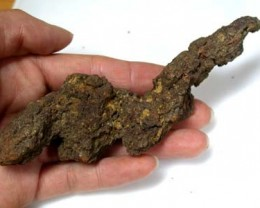TURTLE COPROLITE FROM MADAGASCAR 414 CARATS RA 75
