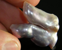 LARGE HIGH LUSTRE QUALITY  KEISHI PEARL 31 CTS SG1395
