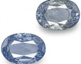 IGI Certified Sri Lanka Blue Sapphires, 4.40 Carats, Oval