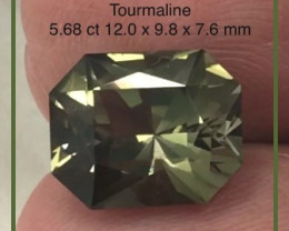 DESIGNER CUT Green Emerald Cut Tourmaline, Tanzania G495 H677