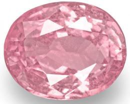 GRS & IGI Certified Madagascar Pink Sapphire, 2.95 Carats, Fluorescent Pink