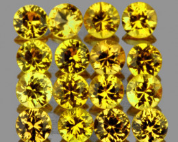 2.50 mm Round 16pcs Yellow Sapphire [VVS]