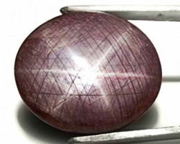 Sierra Leone Star Ruby, 122.60 Carats, Dark Purple Oval