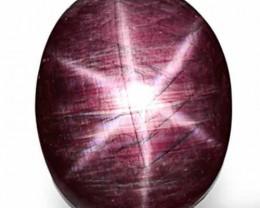 AIGS Certified Sierra Leone Star Ruby, 39.85 Carats, Dark Purplish Red Oval