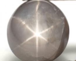 Burma Fancy Star Sapphire, 1.56 Carats, Grey Oval