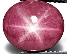 India Star Ruby, 15.54 Carats, Dark Pink Oval
