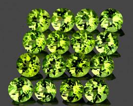 2.50 mm Round 40 pcs 2.83cts Green Peridot [VVS]