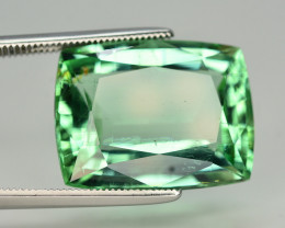 GIL CERT Top Quality 12.71 Ct Natural Zambian Emerald.