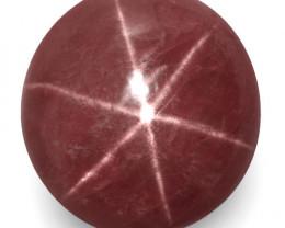 IGI Certified Vietnam Star Ruby, 8.45 Carats, Purplish Red Round