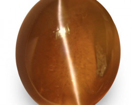 IGI Certified Sri Lanka Chrysoberyl Cat's Eye, 2.02 Carats, Honey Oval