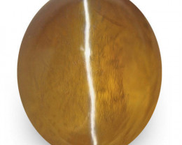 IGI Certified Sri Lanka Chrysoberyl Cat's Eye, 2.06 Carats, Deep Brown Oval
