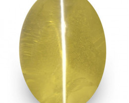 IGI Certified Sri Lanka Chrysoberyl Cat's Eye, 1.47 Carats, Brownish Yellow