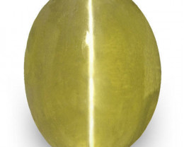 IGI Certified Sri Lanka Chrysoberyl Cat's Eye, 1.14 Carats, Brownish Green