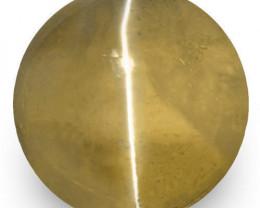 IGI Certified Sri Lanka Chrysoberyl Cat's Eye, 1.53 Carats, Deep Brown