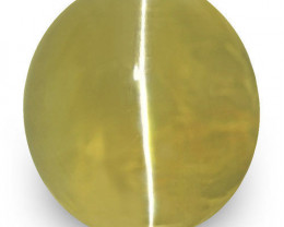 IGI Certified Sri Lanka Chrysoberyl Cat's Eye, 1.55 Carats, Olive Green