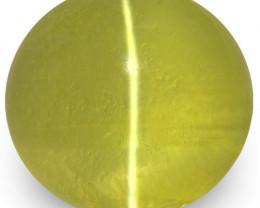 IGI Certified Sri Lanka Chrysoberyl Cat's Eye, 2.74 Carats, Greenish Yellow